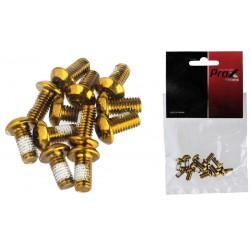 Śruby do mocowania tarczy hamulcowej ProX TORX złote (12 szt.)