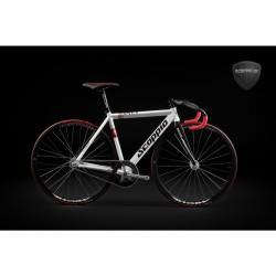 Rama fix bike Scoppio 641.1 rozmiar L-54cm
